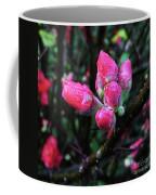 Plum Blossom 1 Coffee Mug