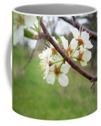 Plum Blossoms In Spring Coffee Mug