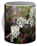 Plum Tree Blossoms Coffee Mug