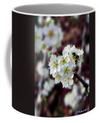 Plum Tree Blossoms II Coffee Mug