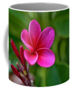 Plumeria - Royal Hawaiian Coffee Mug