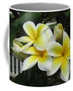 Plumeria In Yellow 3 Coffee Mug