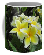 Plumeria In Yellow  5 Coffee Mug