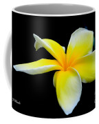 Plumeria In Yellow Coffee Mug