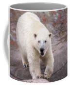 Polar Bear Prowl  Coffee Mug