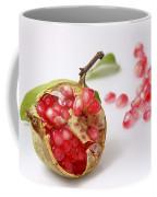 Pomegranate And Seeds  Coffee Mug