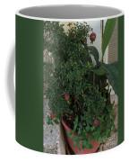 Pomegranate In The Pot Greece  Coffee Mug