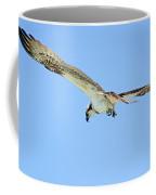 Ponce Osprey 3 Coffee Mug