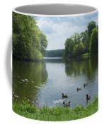 Pond And Ducks Coffee Mug