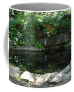 Pond At Twu 2 Coffee Mug