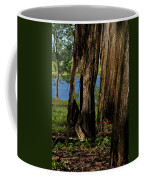 Pond Fragments Coffee Mug