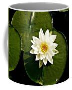 Pond Lily Coffee Mug