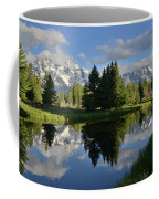 Pond Reflection At Schwabacher Landing Coffee Mug