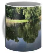 Pond With Ducks Coffee Mug