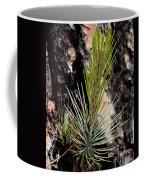 Ponderosa Pine 9 Coffee Mug