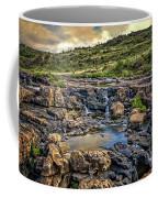 Pools And Waterfalls Coffee Mug