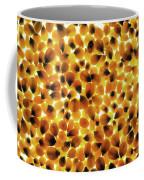 Popcorn Seeds Coffee Mug