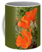 Poppies Antelope Valley Coffee Mug