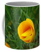 Poppy Flower Bud 9 Orange Poppies Green Meadow Art Prints Baslee Troutman Coffee Mug