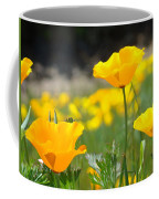 Poppy Flower Meadow 11 Poppies Art Prints Canvas Framed Coffee Mug