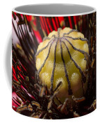 10092 Poppy Love #01 Coffee Mug