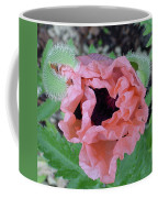 Poppy Opening - 2 Coffee Mug