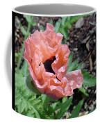 Poppy Opening Coffee Mug