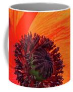 Poppy With Raindrops 2 Coffee Mug
