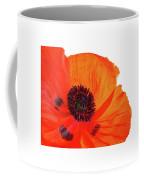 Poppy With Raindrops 3 Coffee Mug