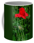 Poppy's Course Of Life Coffee Mug