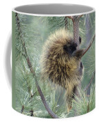 Porcupine Tree Coffee Mug