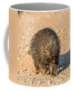 Porcupine Walking Coffee Mug