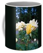 Portland Roses #3 Coffee Mug