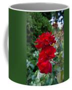 Portland Roses #6 Coffee Mug