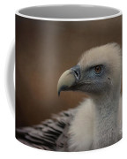 Portrait Of A Griffon Vulture Coffee Mug