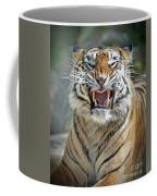 Portrait Of A Growling Tiger  Coffee Mug