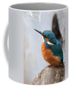 Portrait Of A Kingfisher Coffee Mug
