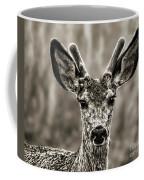 Portrait Of A Male Deer II Coffee Mug