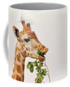 Portrait Of A Rothschild Giraffe IIi Coffee Mug
