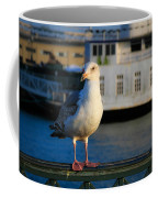 Portrait Of A Seagull Coffee Mug