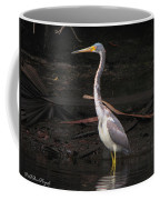 Portrait Of A Tri-colored Heron Coffee Mug