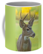 Portrait Of A Young Buck Coffee Mug