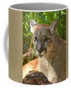 Portrait Of A Young Florida Panther Coffee Mug