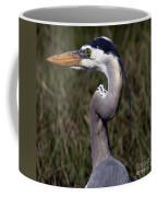 Portrait Of Great Blue Heron Coffee Mug