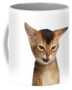 Portrait Of Kitten With Showing Middle Finger Coffee Mug by Sergey Taran