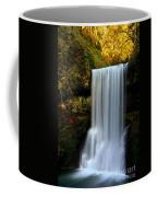Portrait Of Lower South Falls Coffee Mug