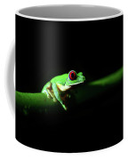 Portrait Of Red-eyed Tree Frog Under The Light At Night Coffee Mug