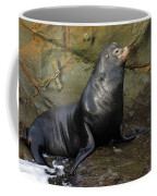 Posing Sea Lion Coffee Mug