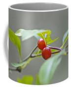 Possum Haw Berries Coffee Mug