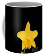 Potinara Shinfong Little Love #3 Coffee Mug